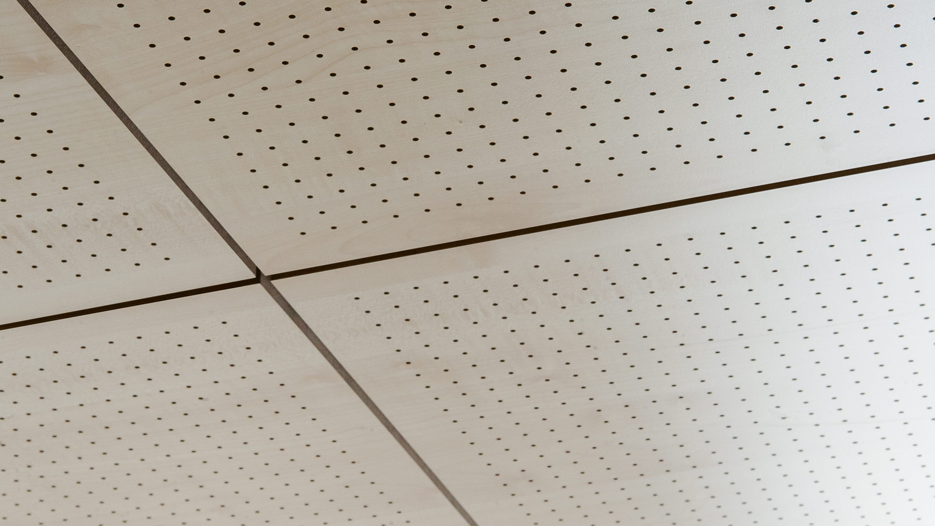 Drilled system Acoustic panels